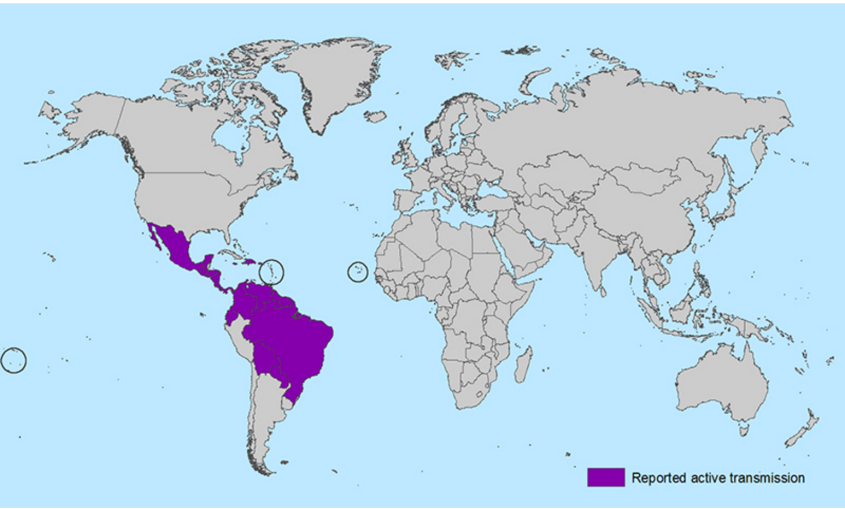 All Countries and Territories with Active Zika Virus Transmission. Photo from the CDC.